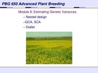 Module 8: Estimating Genetic Variances  Nested design GCA, SCA  Diallel