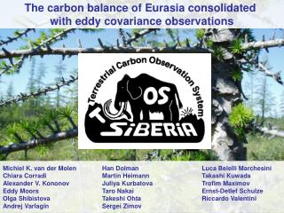 The carbon balance of Eurasia consolidated  with eddy covariance observations