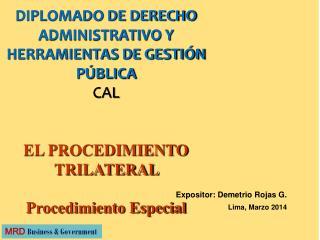 Expositor: Demetrio Rojas G. Lima, Marzo 2014