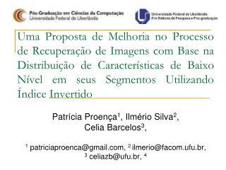 Patrícia Proença 1 , Ilmério Silva 2 ,                           Celia Barcelos 3 ,