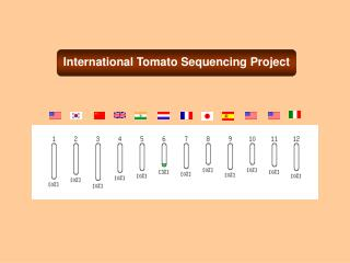 International Tomato Sequencing Project