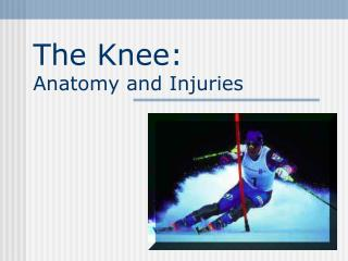 The Knee:  Anatomy and Injuries