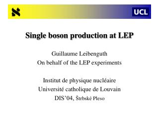 Single boson production at LEP