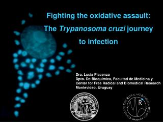 Fighting the oxidative assault:  The  Trypanosoma cruzi  journey  to infection