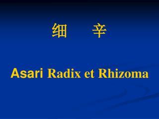细      辛  Asari Radix et Rhizoma