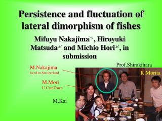 Persistence and fluctuation of lateral dimorphism of fishes