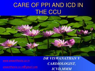 CARE OF PPI AND ICD IN THE CCU