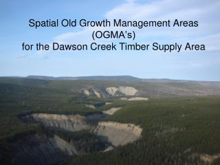Spatial Old Growth Management Areas (OGMA's)  for the Dawson Creek Timber Supply Area