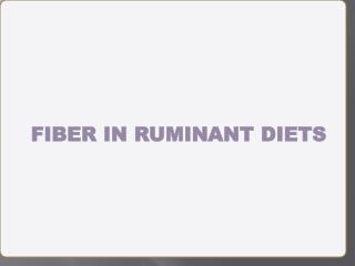 FIBER IN RUMINANT DIETS