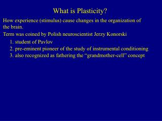 What is Plasticity?