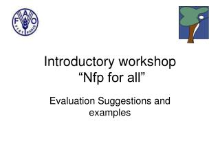 "Introductory workshop  ""Nfp for all"""