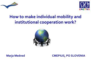 How to make individual mobility and institutional cooperation work?