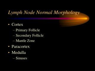 Lymph Node Normal Morphology