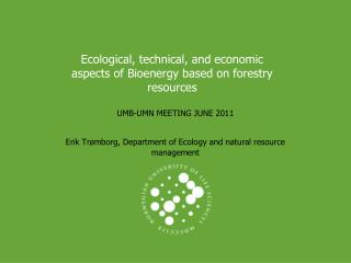 Ecological, technical, and economic aspects of Bioenergy based on forestry resources