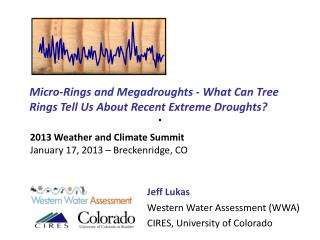 Micro-Rings and Megadroughts - What Can Tree Rings Tell Us About Recent Extreme Droughts?
