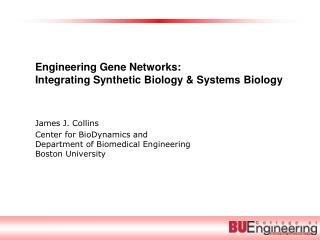 Engineering Gene Networks:  Integrating Synthetic Biology & Systems Biology