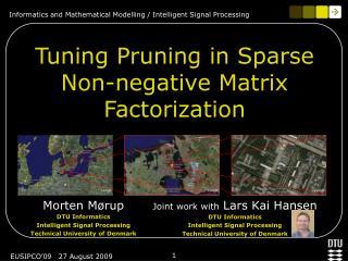 Tuning Pruning in Sparse Non-negative Matrix Factorization