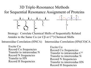 3D Triple-Resonance Methods  for Sequential Resonance Assignment of Proteins