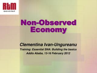 Non-Observed Economy