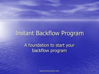 Instant Backflow Program