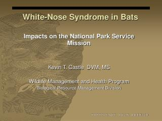 White-Nose Syndrome in Bats