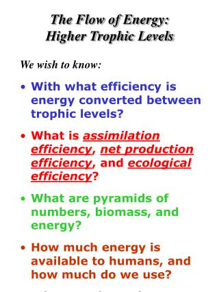 The Flow of Energy:   Higher Trophic Levels