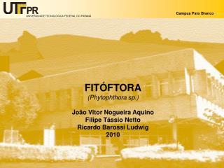 FITÓFTORA (Phytophthora sp.) João Vitor Nogueira Aquino Filipe Tássio Netto Ricardo Barossi Ludwig