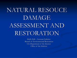 NATURAL RESOUCE DAMAGE ASSESSMENT AND RESTORATION