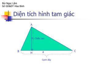 Diện tích hình tam giác