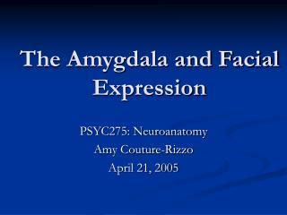 The Amygdala and Facial Expression