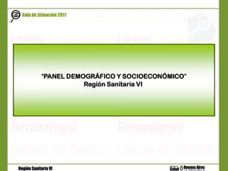 """"""" PANEL DEMOGRÁFICO Y SOCIOECONÓMICO """" Región Sanitaria VI"""