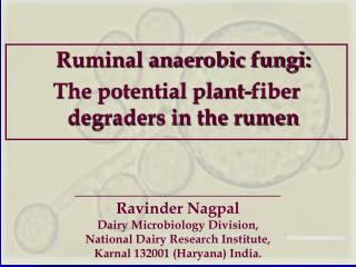 Ruminal anaerobic fungi:  The potential plant-fiber degraders in the rumen
