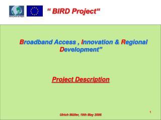 "B roadband Access ,  I nnovation &  R egional  D evelopment"" Project Description"