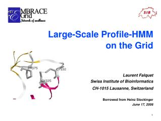 Large-Scale Profile-HMM  on the Grid Laurent Falquet Swiss Institute of Bioinformatics