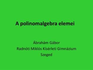 A polinomalgebra elemei