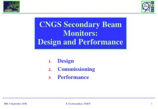 CNGS Secondary Beam Monitors:  Design and Performance