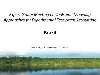 Expert Group Meeting on Tools and Modeling Approaches for Experimental Ecosystem Accounting Brazil