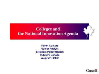Karen Corkery Senior Analyst Strategic Policy Branch Industry Canada August 1, 2002