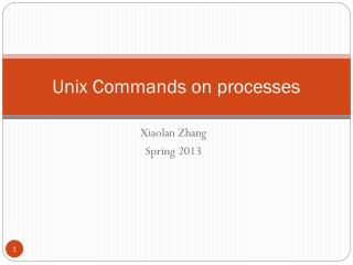 Unix Commands on processes