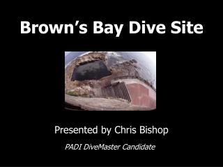 Brown s Bay Dive Site