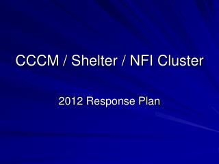 CCCM / Shelter / NFI Cluster