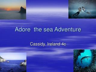 Adore  the sea Adventure