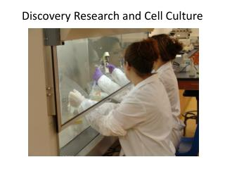 Discovery Research and Cell Culture