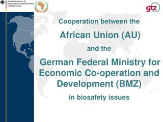 Cooperation between the African Union (AU) and the