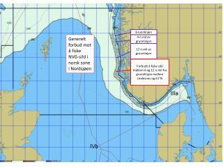 Generelt forbud mot å fiske NVG-sild i norsk sone i Nordsjøen