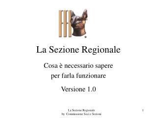 La Sezione Regionale