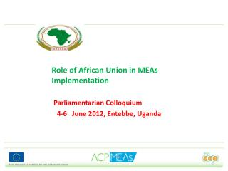 Role of African Union in MEAs Implementation