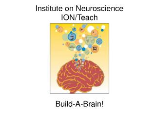 Institute on Neuroscience ION/Teach