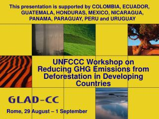 UNFCCC  Workshop on Reducing GHG Emissions from Deforestation in Developing Countries