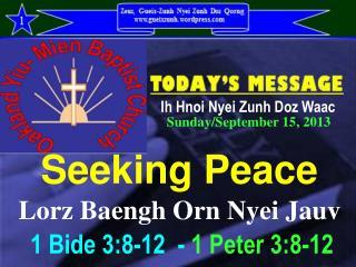 Seeking Peace Lorz Baengh Orn Nyei Jauv